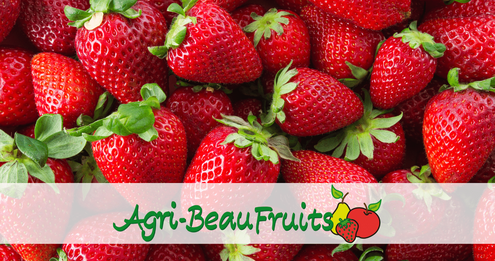 Agri Beaufruits